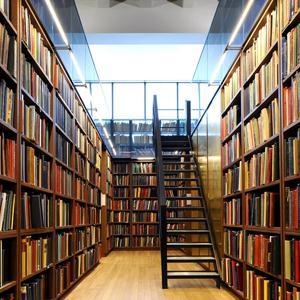 Библиотеки Зебляков